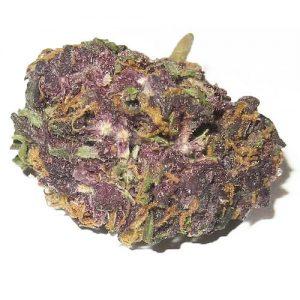 Granddaddy Purple weed