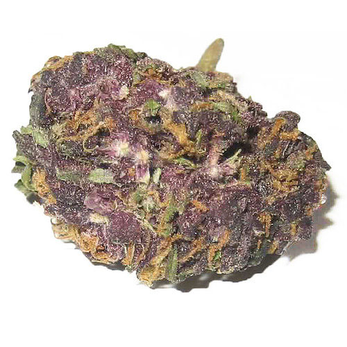 granddaddy purple weed for sale online without marijuana card